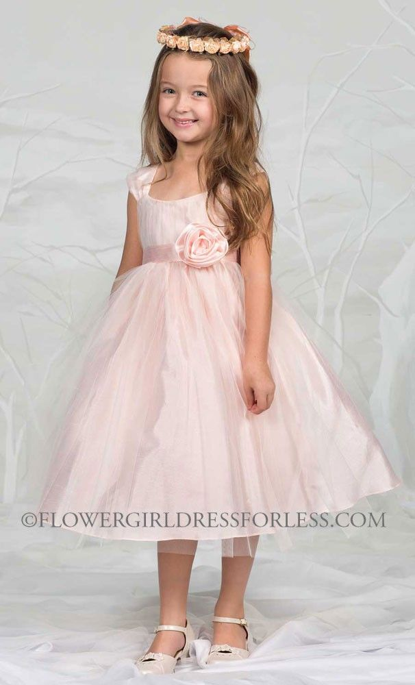 1000 images about wedding board on pinterest tulle dress sweet cam906p girls dress style m906 pink cap sleeve tulle dress light pinks mightylinksfo