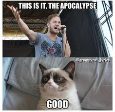 Imagine Dragons and Grumpy Cat