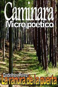 La ranura de la puerta: CAMINARA (Micro/poético)