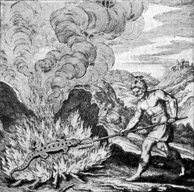 Esprit élémentaire du feu au pouvoir venimeux, la Salamandre habite les profondeurs de la terre près des volcans. Symbole de pureté et d'invincibilité, ce reptile légendaire se nourrit des flammes et vit plusieurs milliers d'années... Dans l'obscurité j'invoque le feu sacré, que jaillisse des cendres une flamboyante Salamandre ! zimzimcarillon.canalblog.com   Salamander from The Story of Alchemy and the Beginnings of Chemistry, 1902.