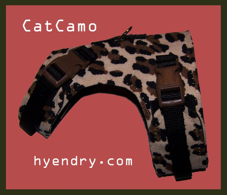 Can we say Camo for Kitty? Finally got a photo of the new spotted in double lock style. Lovin' it!! http://www.hyendry.com/Hyendry_cat_walking_jackets_and_harness.html