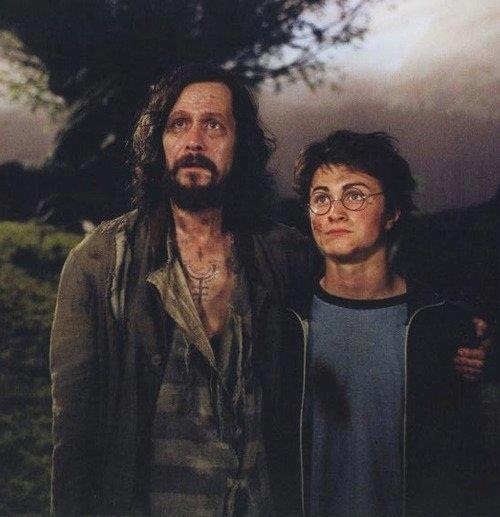 Sirius Black and Harry Potter