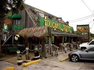 Toucans Mexico Beach Fl Https Www You Watch