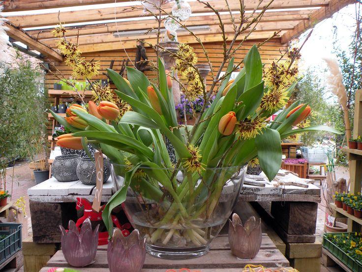 Řezané tulipány a Vilín