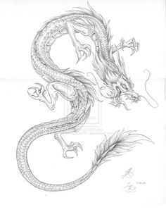 Japanese Dragon Outline | Creative Commons Attribution-Noncommercial-No Derivative Works 3.0 ...