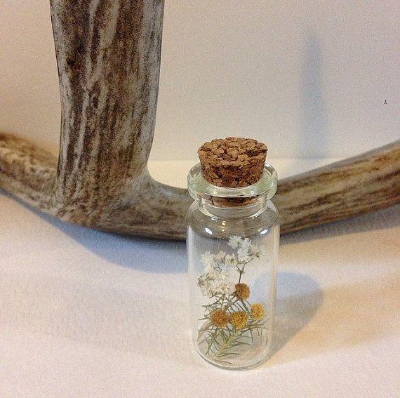Botanical apothecary jar by WldflwrStudio on Etsy