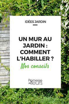 1131 best jardin images on pinterest gardening plants and gardens - Comment habiller un mur ...