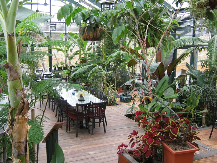 The Tropical Greenhouse At Glass House Winery Things That Make My Heart Sing Pinterest