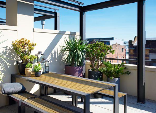 92 best Garden and plants   jardin et plantes images on Pinterest
