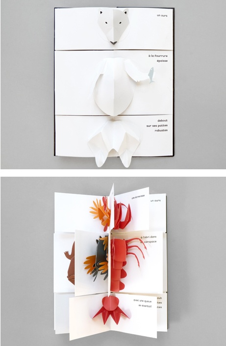 Animal carnaval - pop up book © Iris de Vericourt (Auteur)