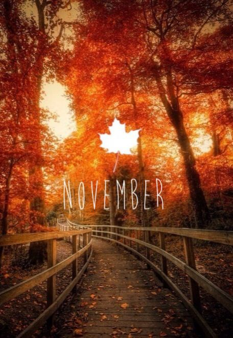 Hello November, we've been expecting you!