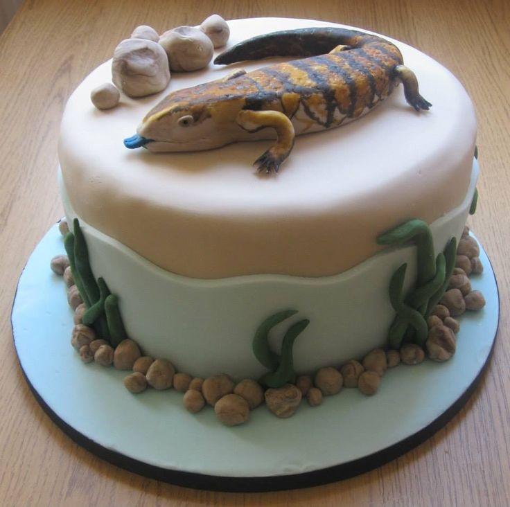 best 20 lizard cake ideas on pinterest reptile party