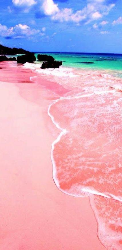 Pic of the Day...Pink Sand Beach, Bermuda --------------------------- #beach #bermuda #caribbean #beaches #pink #tropics #travel #beautiful