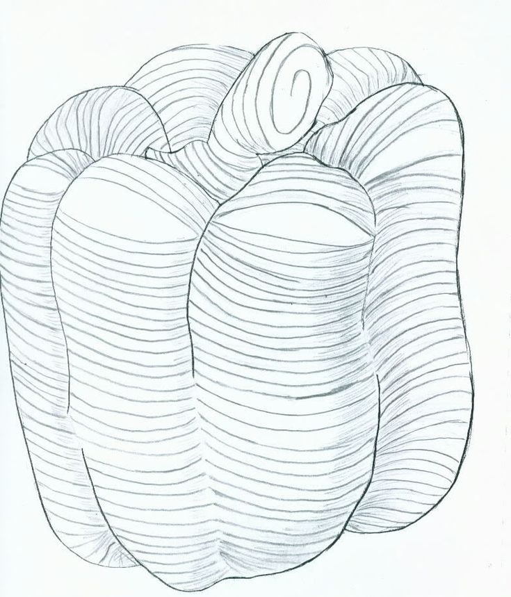 Types Of Contour Line Drawing : Best images about line drawings contour cross