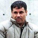 LA LEYENDA DEL CHAPO GUZMAN,SIMBOLO DE LA NARCOCORRUPCION--HOMOZAPPING--