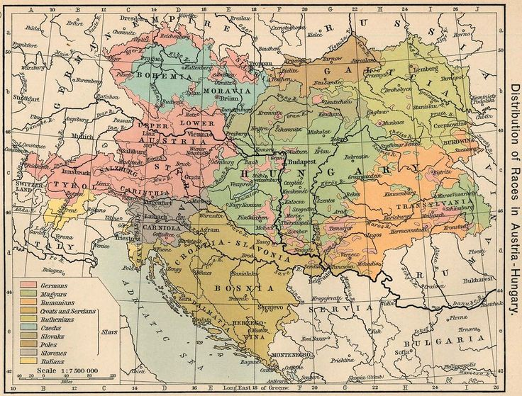98 best historical maps images on pinterest historical maps ethnicity in austria hungary in 1911 1521x1155click here for more maps gumiabroncs Image collections