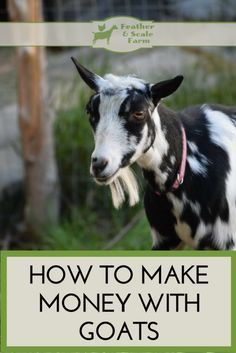 How to Make Money With Goats