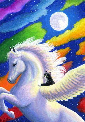Pegasus Horse Tuxedo Cat Rainbow Clouds Moon Fantasy
