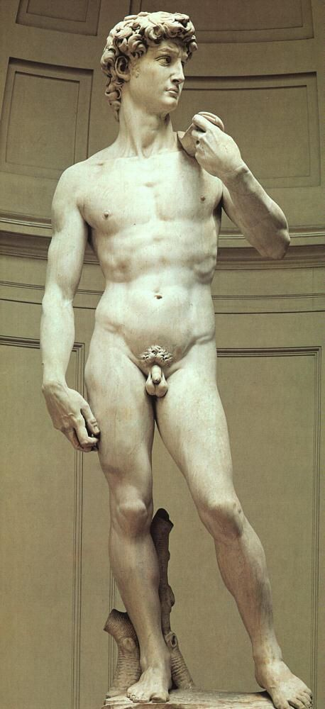 David by Michelangelo is carved in #Carrara #Marble.
