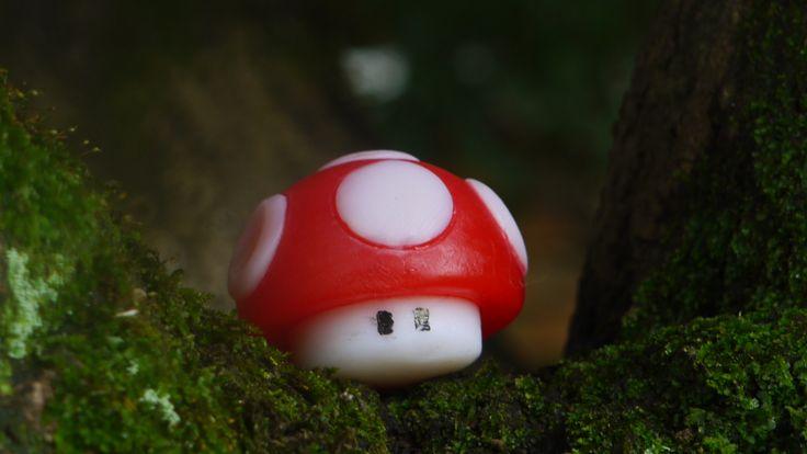 Mushroom! :D