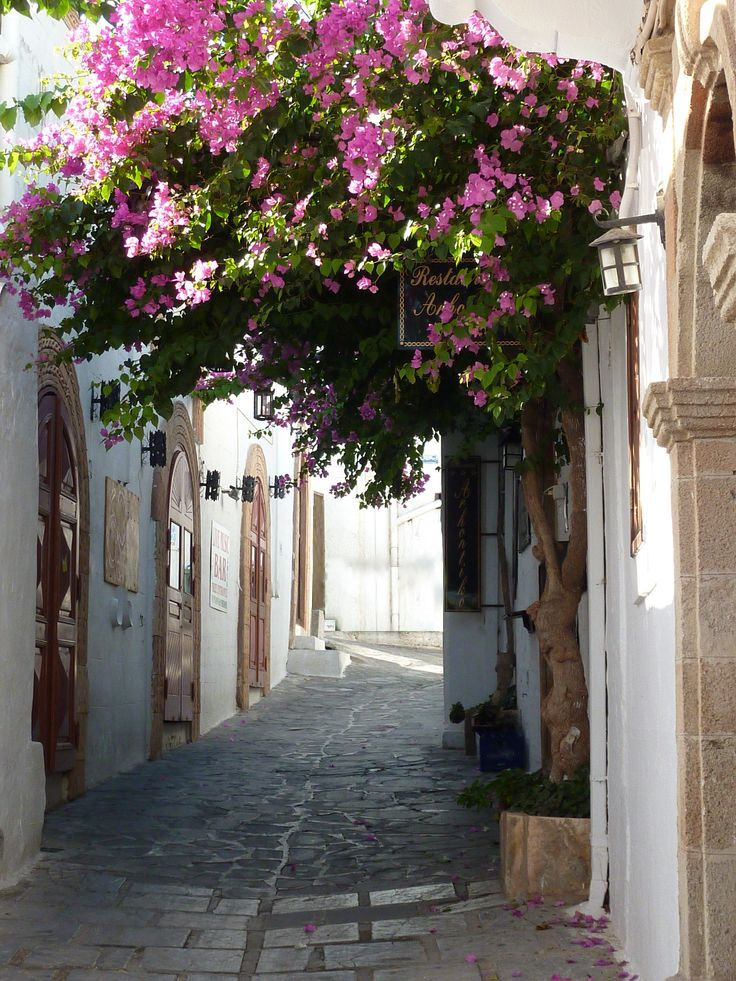 Beautiful Bougainvillea in a small street in Lindos - Rhodos
