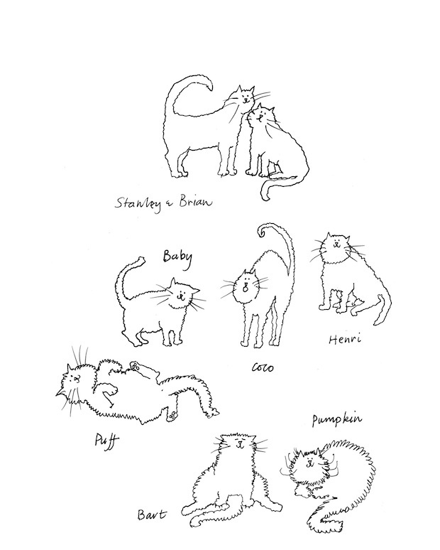 Grace Coddington's sketches of her many cats. #love