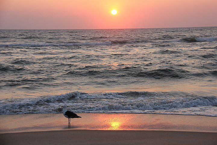 Travel Contest: In the United States Photo #123298: Mingle: Kansas City community photos - Great pic taken of sunrise on our beach by visitor Mike Wheeler.: States Photos, Community Photos, Photos 123298