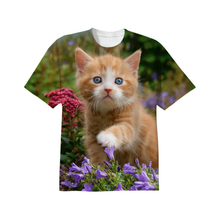 Cute baby cat, ginger kitten in a flowery garden from Print All Over Me  #kitty photographed by Katho Menden