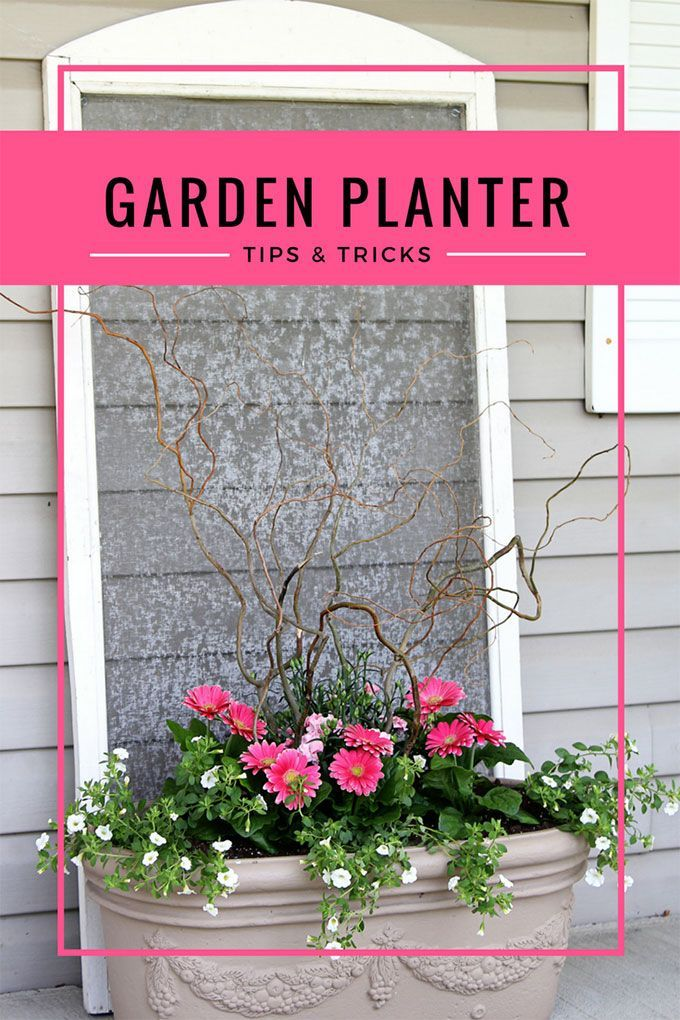 5 Easy Steps To Beautiful Garden Planters