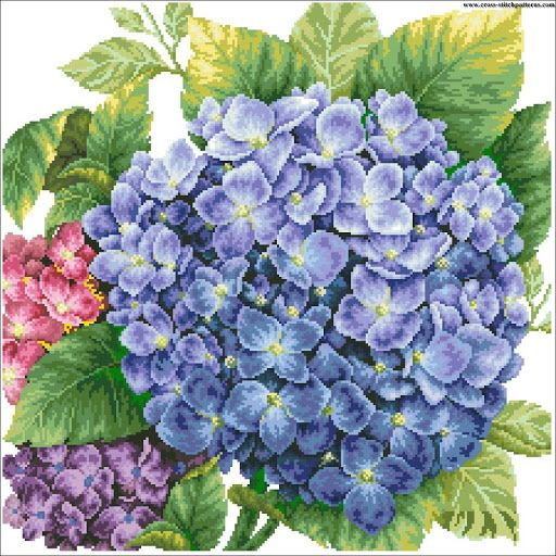 Hydrangea - Counted cross stitch patterns and charts