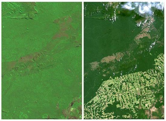 REUTERS/NASA desmatamento em Rondonia /Brasil