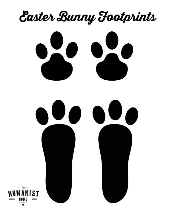Rabbit footprints template