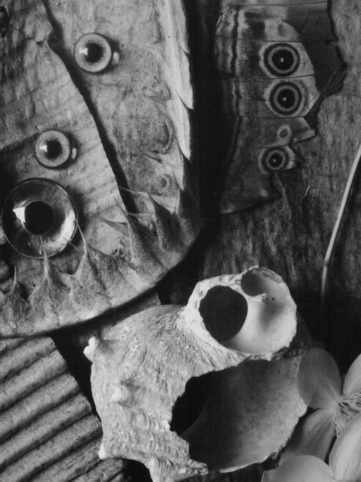 "Eberhard Grames / From the ""Broken Spirits"" series"