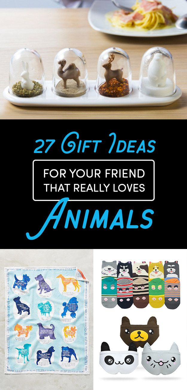 Best Gifts For Cat Lovers Buzzfeed