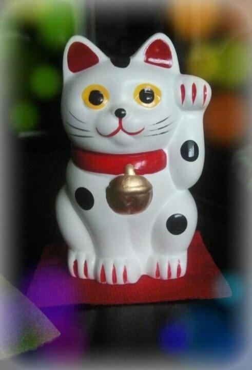 Gato chino :)