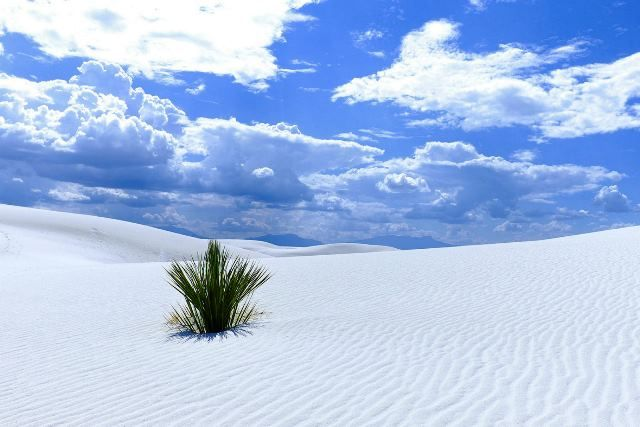 Monumento Nacional White Sands, no Novo México