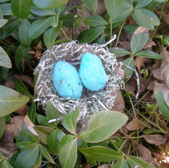 Wedding favor - Bird nest made of shredded money and handmade paper, with Seed Bomb plantable paper eggs