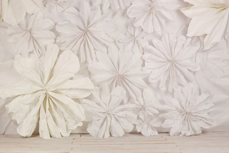 Floral wall made from butchers paper: Butcher Paper, Paper Flowers Backdrops, Flowers Wall, Wall Treatments, Photo Booths, Diy Wall Decor, Wall Flowers, Backdrops Ideas, Photo Backdrops