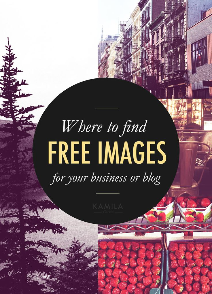 Where to find free images for your blog & social media content