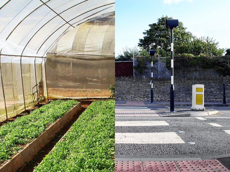 11 best Urban Gardens images on Pinterest Landscaping, Gutter - küche selbst bauen