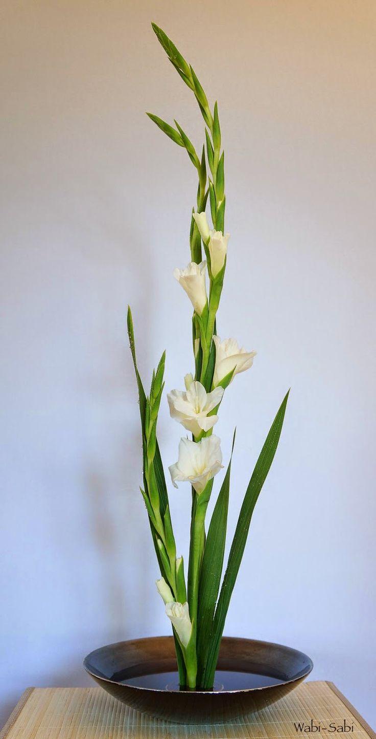 Die majestätische Gladiole in ihrer vollen Pracht – Tollwasblumenmachen.de