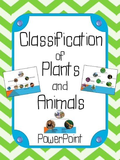classification of plants and animals powerpoint presentation aligned with the 5th grade. Black Bedroom Furniture Sets. Home Design Ideas