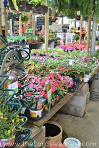 Learn How To Make A Butterfly Garden With Gorgeous Flowers From Home Depot  #DigIn #