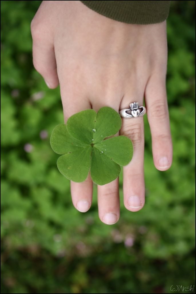 64 Best The Claddagh Ring Images On Pinterest Claddagh