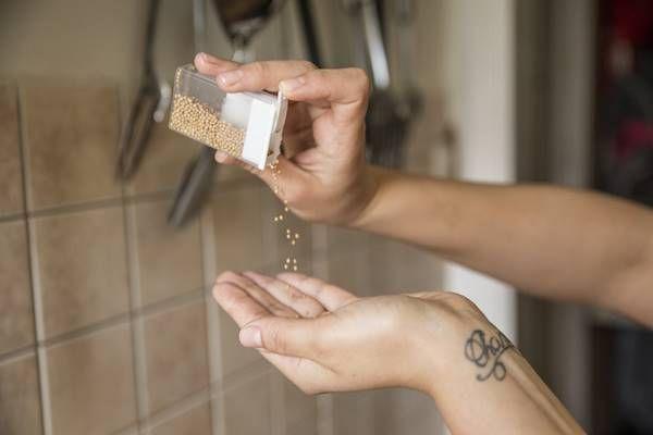 Mustármagot hordott magával egy tic-tac-os dobozban. Azt hittem először megbolondult, de amikor megértettem az okát, rájöttem milyen hasznos! - Tudasfaja.com