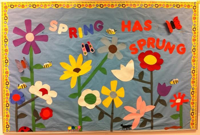 Spring Has Sprung Seasonal Bulletin Board Decoration