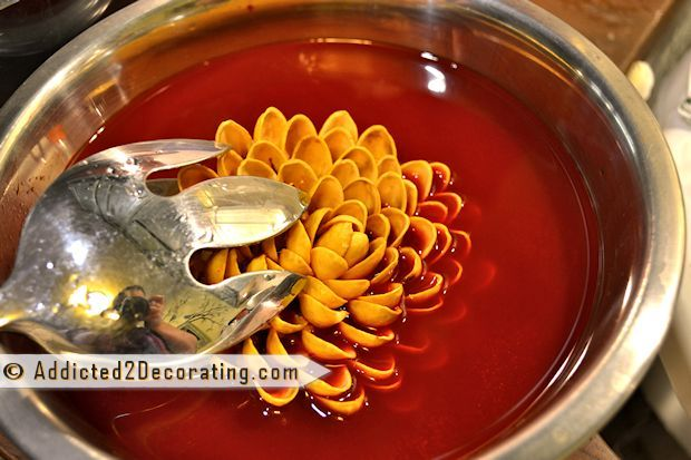 "Faux ""Succulent Garden"" Made With Pistachio Shells :: Hometalk"
