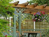 Zahradní pergoly: vše o stavbě a fotogalerie pro inspiraci