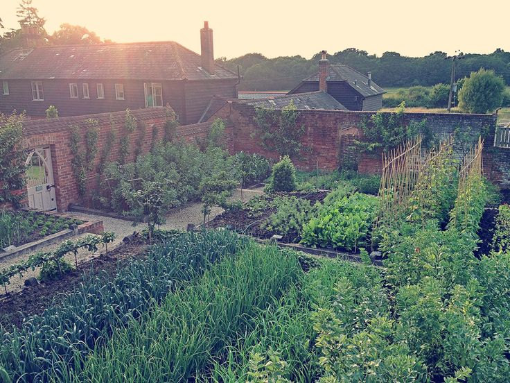 Walled kitchen garden at The Pig Hotel in Brockenhurst in the New Forest.