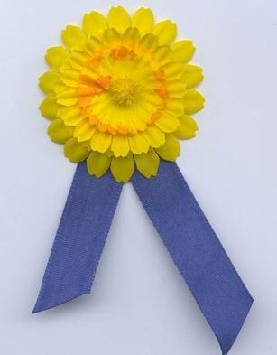 Radio Praha - Květinový den - boj proti rakovině 2002